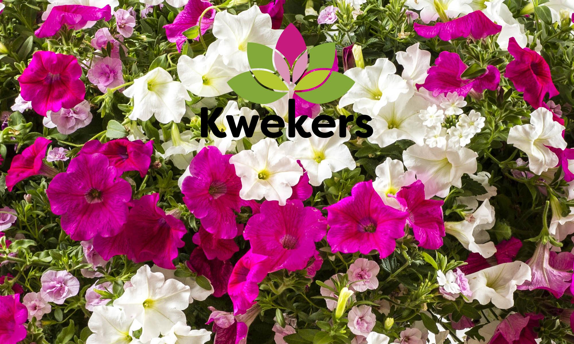 Kwekers info
